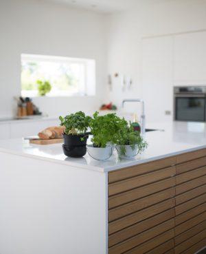 Keuken en buitenkeuken